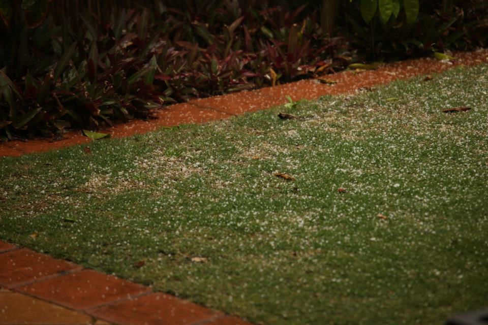 evolve hail
